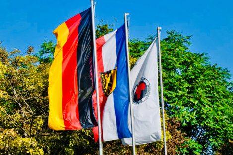 Flagge Mannheim Tornados